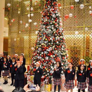 Lễ thắp sáng cây thông Noel tại khách sạn 5 sao - Christmas Tree Lighting Ceremony 2019